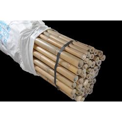 Bamboo cane 210cm