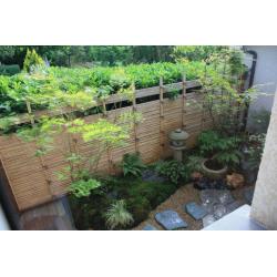 Bamboo cane 244cm